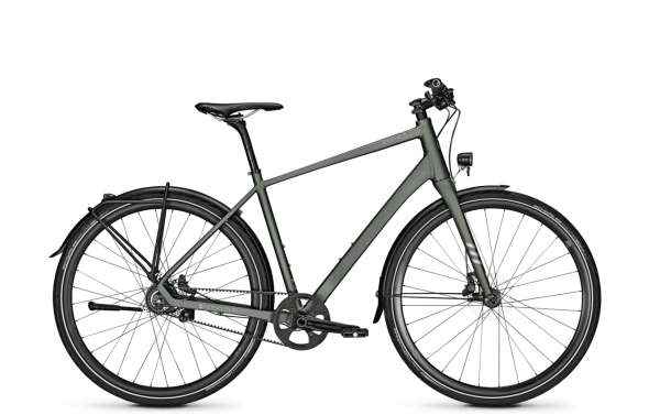 Kalkhoff ENDEAVOUR LITE 8 Diamant grey 2020 Citybike Trekkingbike