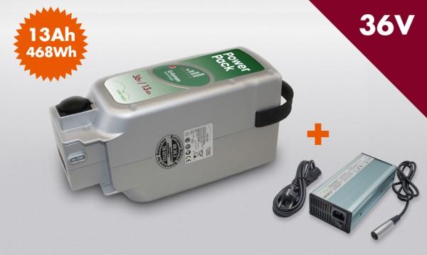 E-BIKE VISION Power Pack Ersatzakku Akku für Panasonic Antrieb 36V 13Ah 468Wh